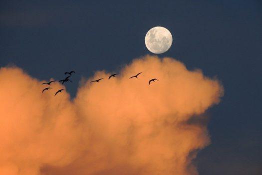 Pun mesec u Ovnu (5.10.) Tražite za sebe